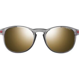 Julbo Valparaiso Spectron 3 Okulary przeciwsłoneczne Mężczyźni, szary/złoty